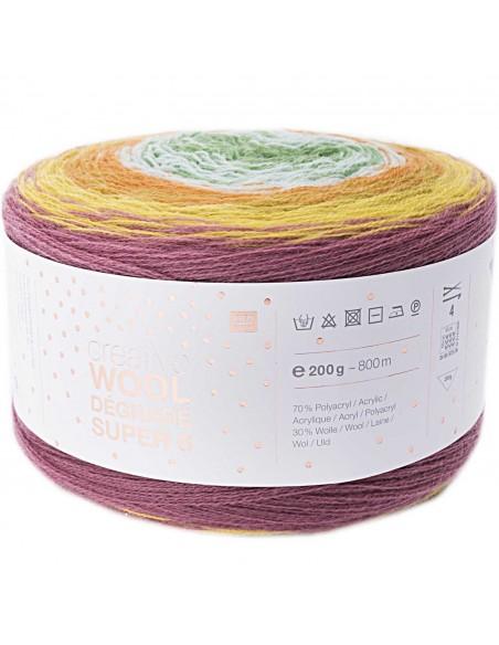 Pelote Creative wool dégradé super 6 baie-vert