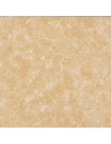 Tissu en coton Spraytime Sable