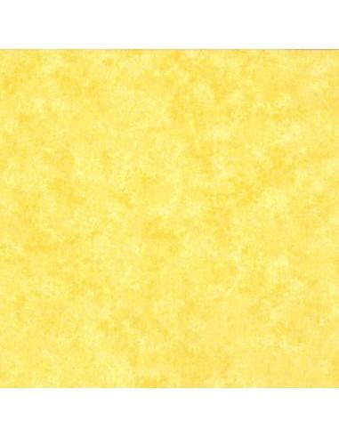Tissu en coton Spraytime Paille