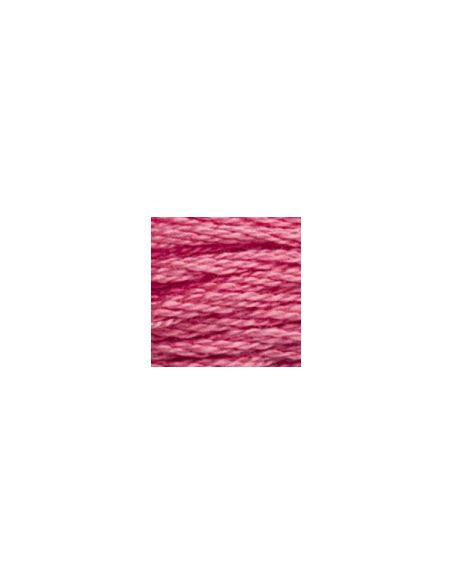Fil à broder mouliné spécial 25 coloris 961