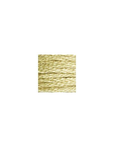 Fil à broder mouliné spécial 25 coloris 3046