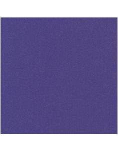Tissu en coton Sevilla Shots Violette