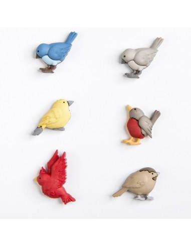 Assortiment de 6 boutons décoratifs - Collection Animaux - Oiseaux